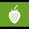 Elaboramos los purés de fruta para los postres vegetales con fruta en Alta Saboya.
